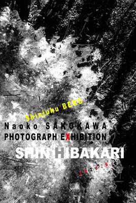 sakokawa_l