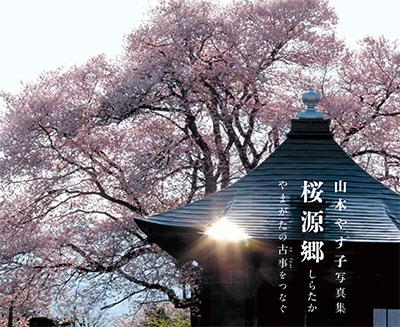 yamamotosakura-L